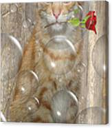 Cat With Bubbles Canvas Print