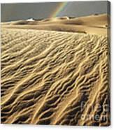 Catch A Rainbow Canvas Print