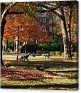 Catching Rays - Davidson College Canvas Print