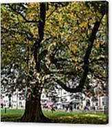 Cathedral Square - Exeter Canvas Print