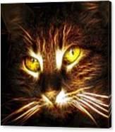 Cat's Eyes - Fractal Canvas Print