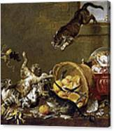 Cats Fighting In A Larder Canvas Print