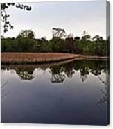 Cattail Swamp I Canvas Print