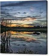 Cattails And Sunset Canvas Print