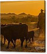 Cattle Drive 10 Canvas Print