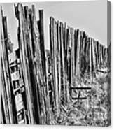 Cattle Fence By Diana Sainz Canvas Print
