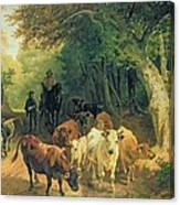 Cattle Watering In A Wooded Landscape Canvas Print