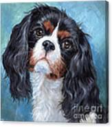 Cavalier King Charles Spaniel Canvas Print