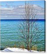 Cave Point County Park Door County  Canvas Print