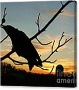 Cawcaw Over Sunset Silhouette Art Canvas Print