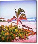 Cayman Island Secret Canvas Print