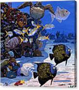 Cayman Reef Re0024 Canvas Print