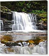 Cayuga Falls Canvas Print