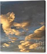 CC1 Canvas Print