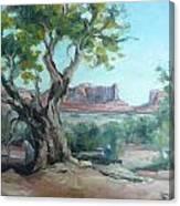 Cedar At Monument Valley Canvas Print