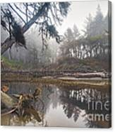 Cedar Creek Lagoon Canvas Print