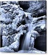Cedar Falls In Winter Canvas Print