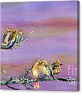 Bohemian Waxwings Birds Canvas Print