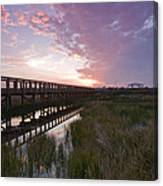 Celery Fields Sunset Canvas Print