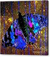 Celestial Butterfly Canvas Print