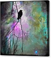 Celestial Dream Of Crow Canvas Print