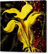Celestial Flower Canvas Print
