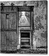 Cell 27 Canvas Print