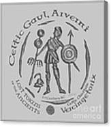 Celtic Vercingetorix Coin Canvas Print
