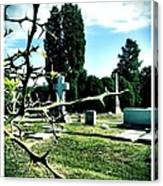 Cematary With Lemon Tree Canvas Print