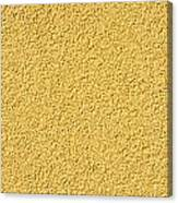 Cement - Stucco Wall Texture Canvas Print