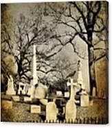 Cemetery Shades Canvas Print