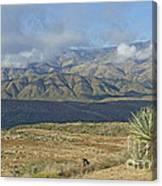 Central Arizona Landscape Canvas Print