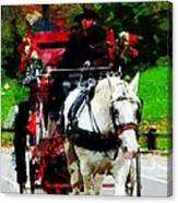 Central Park Carriage Canvas Print