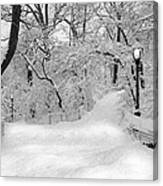 Central Park Dressed Up In White Canvas Print