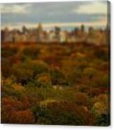 Central Park In Autumn Canvas Print