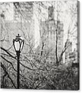 Central Park Lamppost In New York City Canvas Print