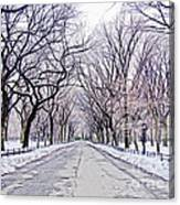 Central Park Mall In Winter Canvas Print