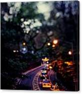 Central Park Nights Canvas Print