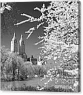 Central Park - Nyc Canvas Print