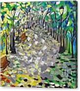 Central Park Serenity Canvas Print
