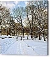 Central Park Snow Storm One Day Later2 Canvas Print