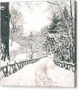 Central Park Winter Landscape Canvas Print