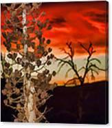 Century Soldier Sunset Canvas Print