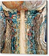Cervical Spinal Cord, Posterior View Canvas Print