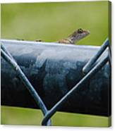 Chain Link Highway Canvas Print