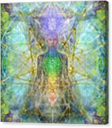Chakra Tree Anatomy With Mercaba In Chalice Garden Canvas Print