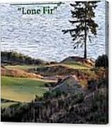 Chambers Bay's Lone Fir - Chambers Bay Golf Course Canvas Print