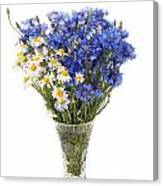 White Camomile And Blue Cornflower In Glass Vase  Canvas Print