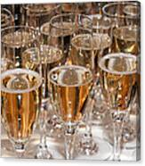 Champagne 01 Canvas Print