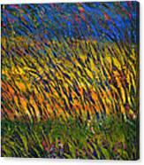 Champs De Ble Canvas Print